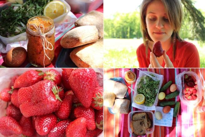 colorful spring picnic